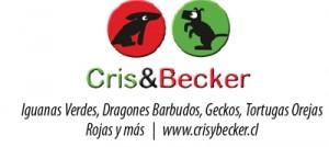 cris_becker