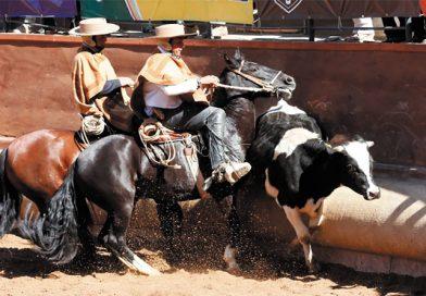 Análisis de un Especialista: El Rodeo y La Fisiatría, Colleras Opuestas