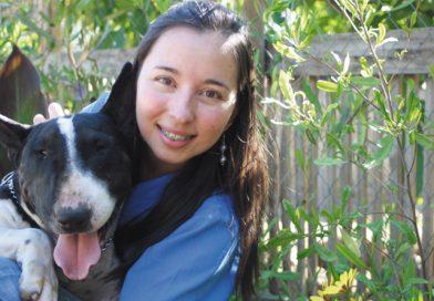 En Limache, Mascotas Hostal Veterinario: Mascotas en el Mejor Hotel