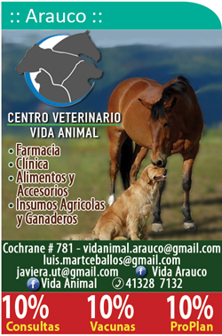 Centro Veterinario Vida Animal