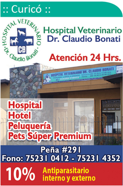 Hospital Veterinario Dr. Claudio