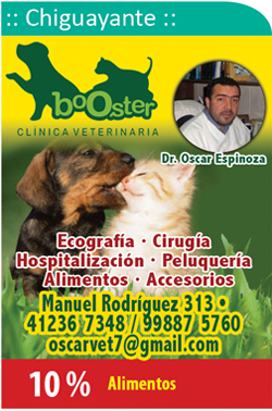 Clinica Veterinaria Booster