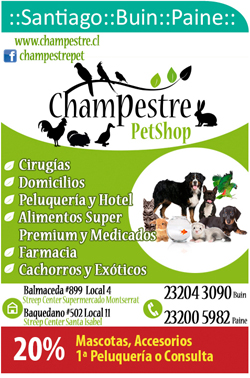 Champestre Pet Shop
