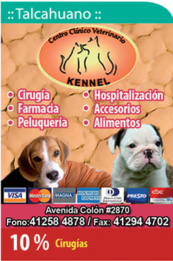 Centro Clinico Veterinario Kennel