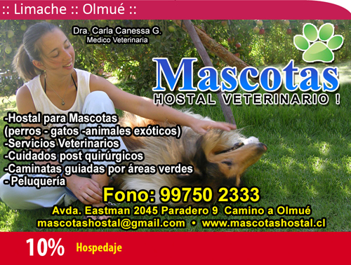 Hostal Veterinario Mascotas