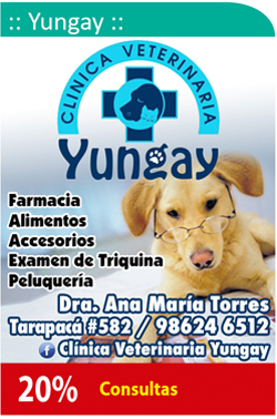 Clinica Veterinaria Yungay