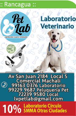Laboratorio Veterinario Pet Lab