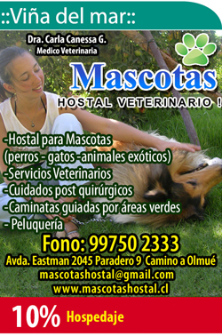 Hostal Veterinario
