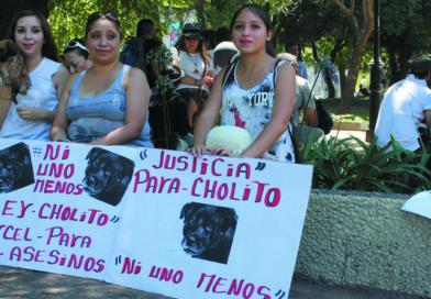Ley Cholito: Obligaciones para con Mascotas y Animales