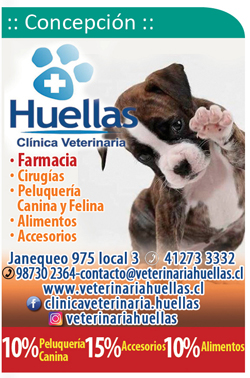 Clinica Veterinaria Huellas