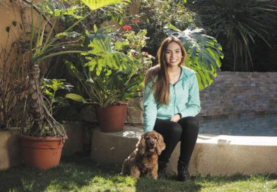 Alimento para Perros mayores de 7 años: El Cuidado y nutrición de Nuestras Mascotas Senior