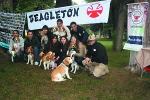 Beagle10 ed38