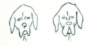 perro fila 4