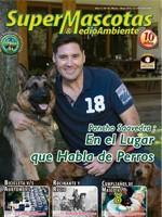 portada 43